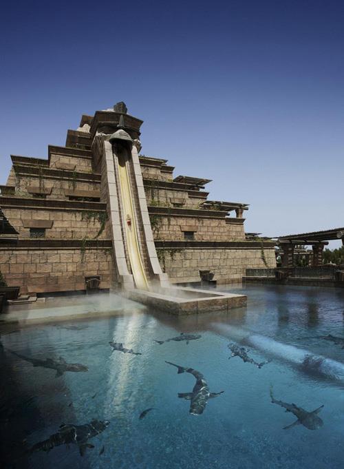 atlantis hotel dubai shark slide