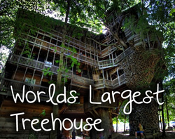 biggest treehouse in the world 2013 biggest treehouse in the world 2013 tree house that rises