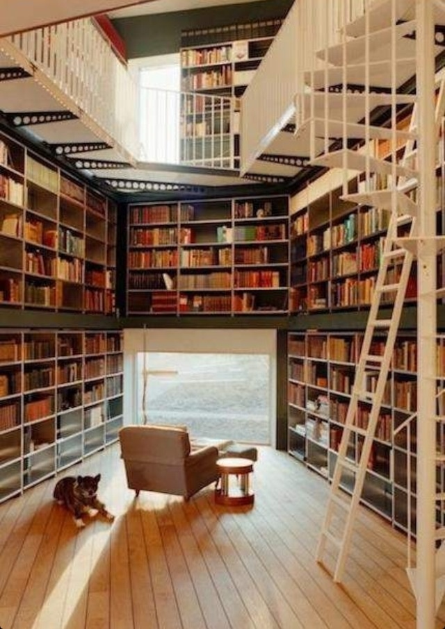 Cool Bookshelf Design Interior