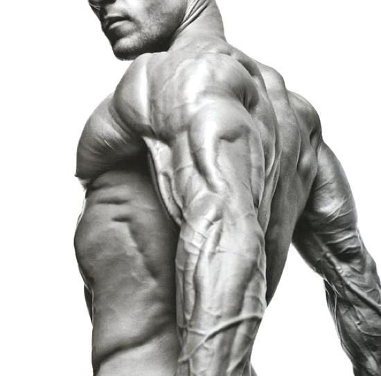 fitness-inspiration-gallery-dailymilk-19